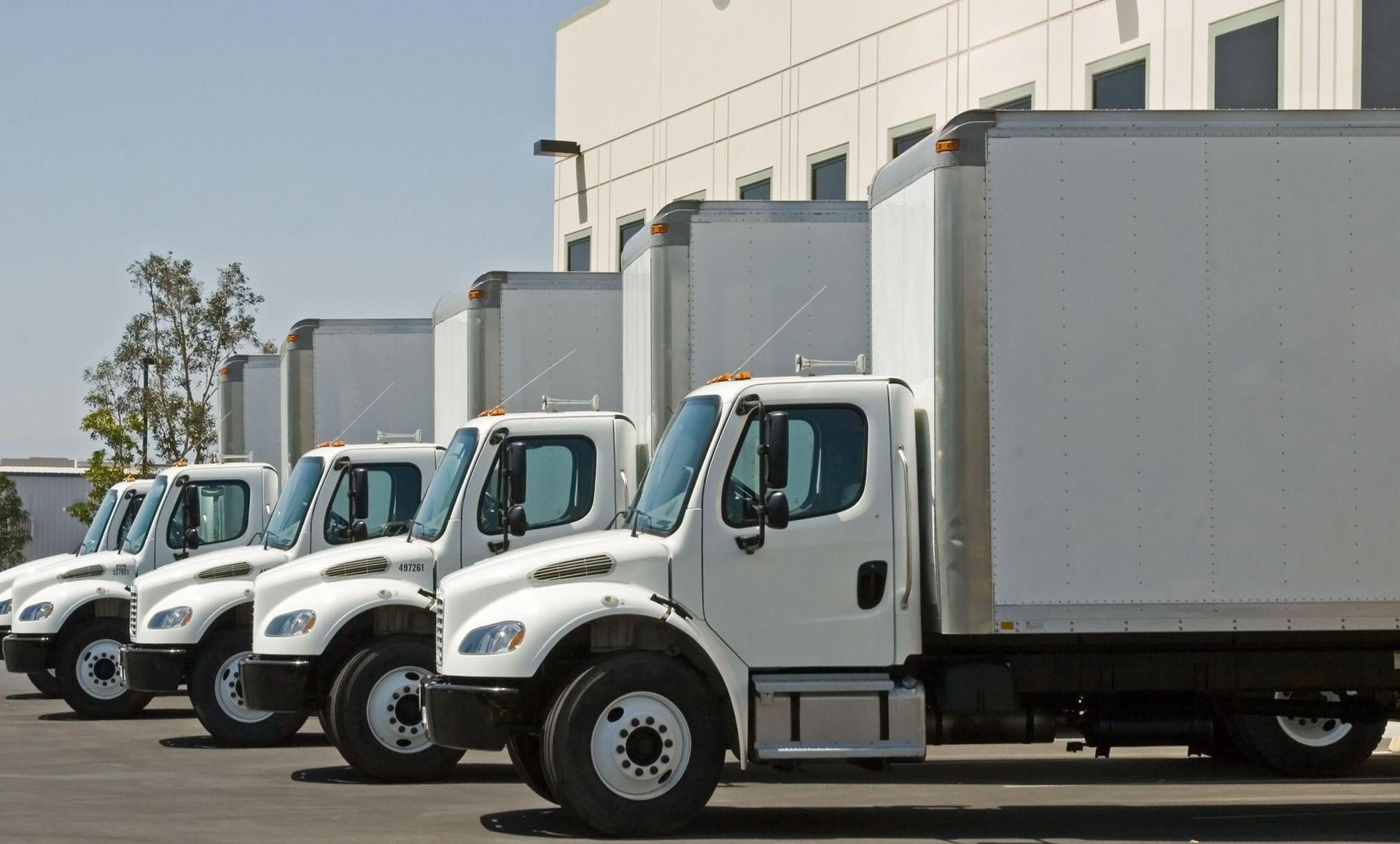 Basculas electronicas guadalajara torrey camionera - Básculas camioneras